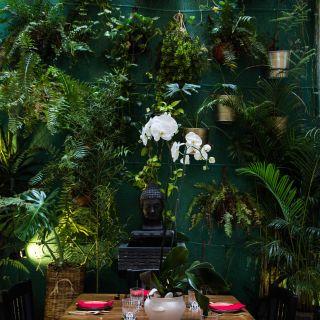 Una foto del restaurante Daeng