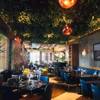 A photo of Porfirio's - Coapa restaurant