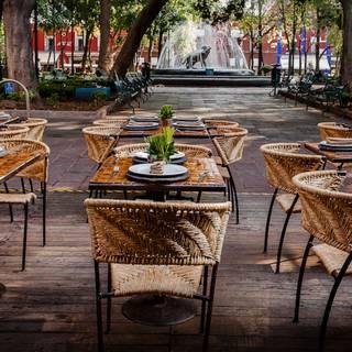 A photo of Los Danzantes - Mexico City restaurant