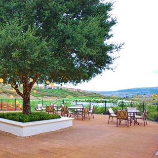 A photo of The View Restaurant at The Bridges Golf Club restaurant