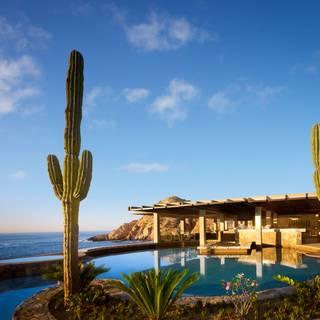 Una foto del restaurante Marea at Montage Los Cabos